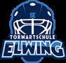 cropped-torwartschule_elwing_logo_last2.png